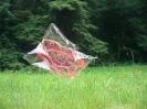 Biologisch abbaubarer Polylactid-Heliumballon